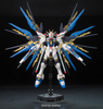 Real Grade:  Strike Freedom Gundam RG Model Kit 1/144 Scale #14 - SOLD OUT