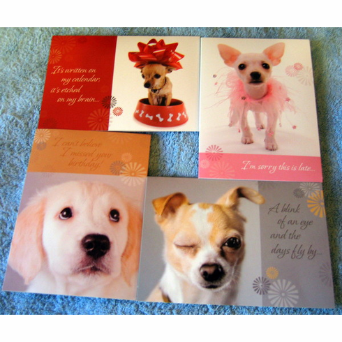 Get Your Belated Birthday Pals At Discount Wholesale Sale Priced