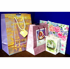 Gift Bags--Two