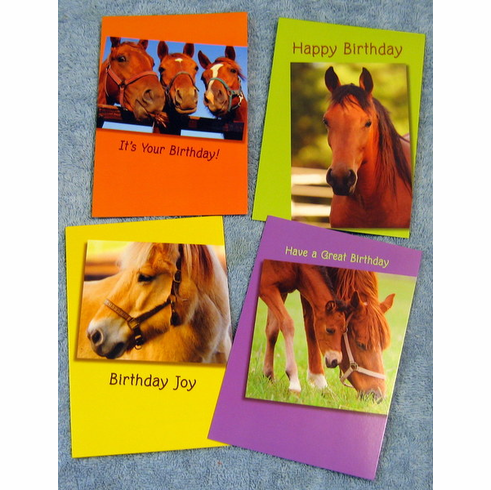 Horses birthday 12 greeting cards at discount wholesale sale horses birthday 12 greeting cards m4hsunfo