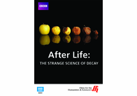 After Life: The Strange Science of Decay (Enhanced DVD)