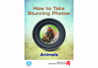 Animals: How to Take Stunning Photos  (Enhanced DVD)