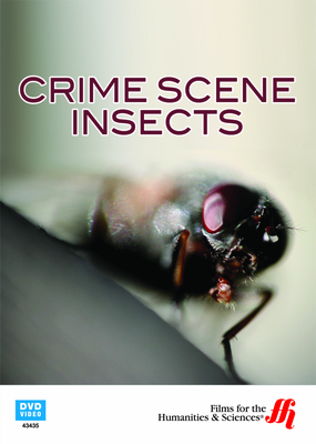 Crime Scene Insects (Enhanced DVD)