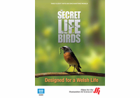 Designed for a Welsh Life: The Secret Life of Birds (Enhanced DVD)