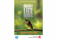 Feathering the Nest: The Secret Life of Birds (Enhanced DVD)