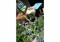 Finding the Right Art Easel