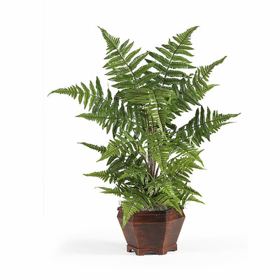 Forest Fern w/Wood Basket