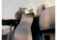 Guggenheim Museum Bilbao  Video  (DVD)