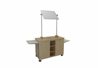 HANN Mobile Demonstration Bench with Mirror