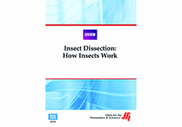 Insect Dissection: How Insects Work (Enhanced DVD)