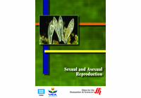 Sexual and Asexual Reproduction (Enhanced DVD)