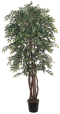 Smilax Silk Tree 6'