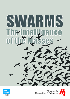Swarms: The Intelligence of the Masses (Enhanced DVD)