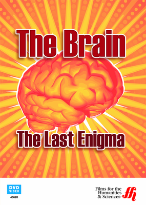 The Brain: The Last Enigma (DVD)