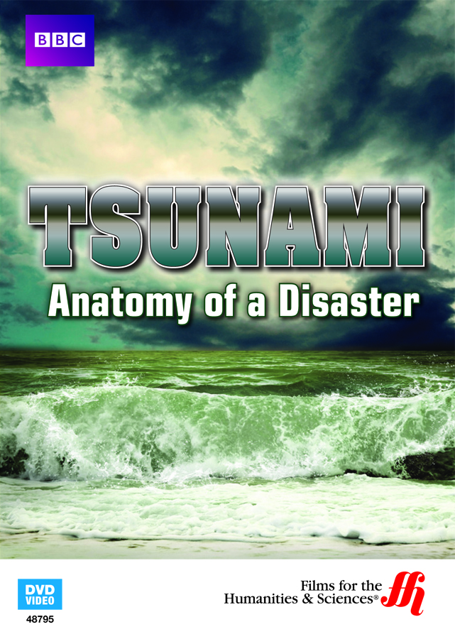 the damaging effects of a tsunami For sure, one of the most dangerous effects of an earthquake is a tsunami tsunamis are giant waves that can cause floods and in some cases may reach up to 100 feet in height tsunamis are giant waves that can cause floods and in some cases may reach up to 100 feet in height.