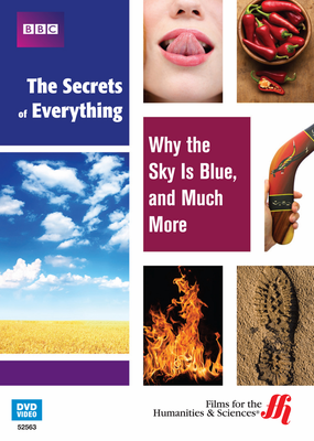 Why the Sky Is Blue, and Much More: The Secrets of Everything (Enhanced DVD)