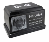 Black Granite Olympus Pet Cremation Urn with Engraved Photo