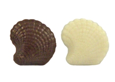 Seashell - .25 oz.