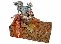 Squirrel Dessert Box - 11 oz.