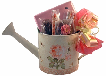Watering Can - 11 oz.