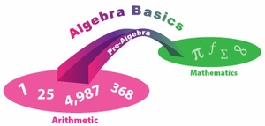 Algebra By Chapter (8 Chapters) + Algebra Basics