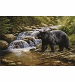Black Bear Image Entrance Mats