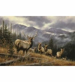 Elk Image Entrance Mats