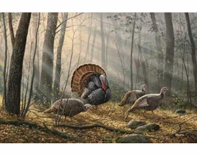 Wild Turkey Entrance Mats