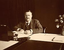 26th US President Theodore Roosevelt 1907 Photo Print for Sale