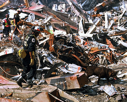 9/11 FEMA Worker with Search and Rescue Dog Photo Print