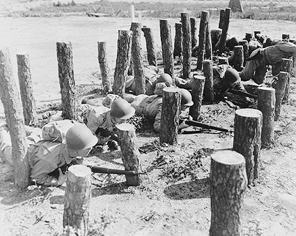 Camp Edwards, MA. Asparagus Patch WWII Photo Print