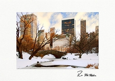 Central Park Bridge Winter New York City Personalized Christmas Cards