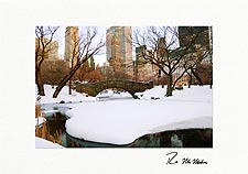 Central Park New York City Personalized Christmas Cards