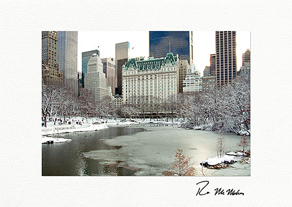 Central Park South, New York City Christmas Individual Greeting Cards