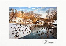 Central Park Winter Thaw New York City Personalized Christmas Cards