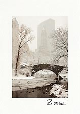 Central Park Winter Wonder New York City Personalized Christmas Cards