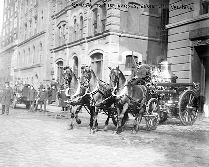 Classic Firefighter Horse Drawn Fire Engine NYC 1915 Photo Print