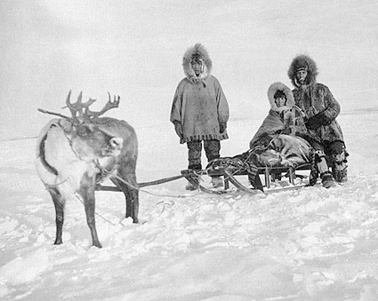 Eskimo / Inuit w/ Reindeer & Sled Alaska Photo Print