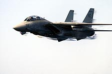 F-14A / F-14 Tomcat High Speed Pass Photo Print for Sale