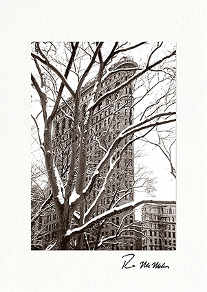 Flatiron Building Christmas Holiday Individual Greeting Cards