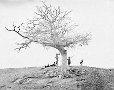 Lone Grave on Civil War Battlefield of Antietam Photo Print for Sale