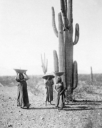 Maricopa Indian Women Edward S. Curtis 1907 Photo Print