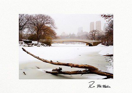 Personalized Central Park Bow Bridge Winter Holiday Cards