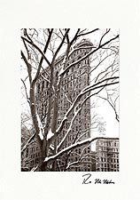 Personalized Flatiron Building Christmas Holiday Greeting Cards