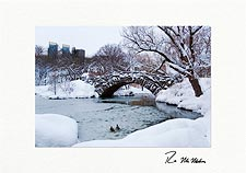 Frozen Central Park Personalized Christmas Cards