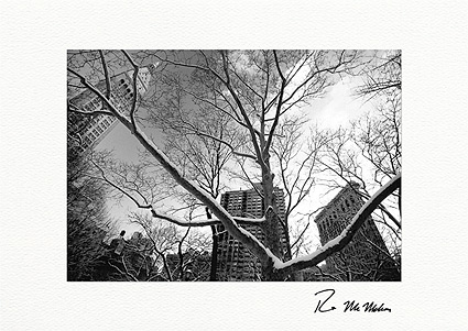 Personalized Madison Square Park Flatiron Building Holiday Cards
