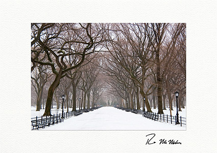 Personalized Poet's Walk Winter, Central Park Holiday Cards