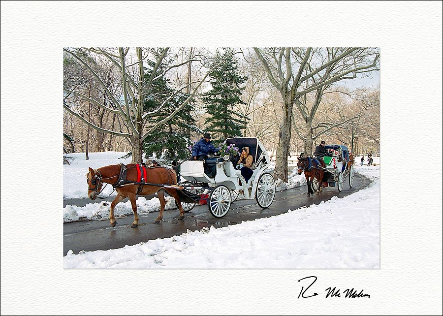 Winter Carriage Ride, Central Park New York City Holiday Boxed ...