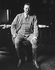Theodore Teddy Roosevelt Library Portrait Photo Print for Sale