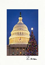 Washington D.C. Capitol Christmas Tree Personalized Christmas Cards